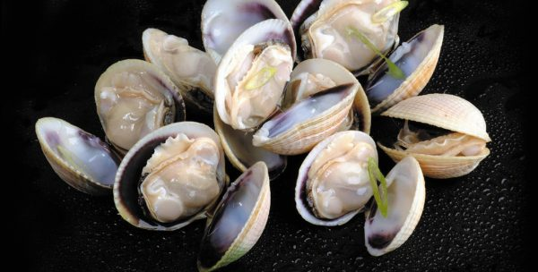 [FROZEN] NZ Littleneck Clams 1kg